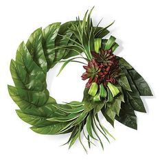 Succulent Dasheen Leaf Wreath - Frontgate