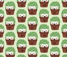 ♡☆ Cactus Hedgehog's ☆♡