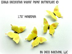 24 YELLOW ORANGE Small 175 Edible Image Decorative Wafer Paper Butterflies  Butterfly Wedding Cake Cupcake Topper ** See this great product.(This is an Amazon affiliate link and I receive a commission for the sales)