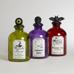 One of my favorite discoveries at WorldMarket.com: Glass Halloween Potion Bottles, Set of 3