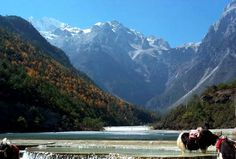 Yulong Snow Mountain, Lijiang, Yunnan Province, China