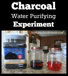 Charcoal water purifying experiment - TheHomeschoolScientist.com