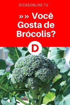 Cardápio saudável: Brócolis. Você costuma incluí-lo em suas refeições?