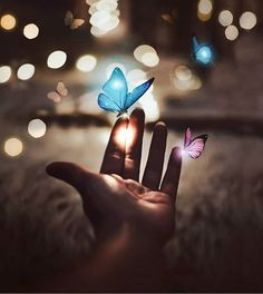 aesthetic, aesthetics, and beautiful image Cute Wallpaper Backgrounds, Love Wallpaper, Pretty Wallpapers, Colorful Wallpaper, Galaxy Wallpaper, Blue Butterfly Wallpaper, Photoshop Images, Beautiful Nature Wallpaper, Beautiful Butterflies