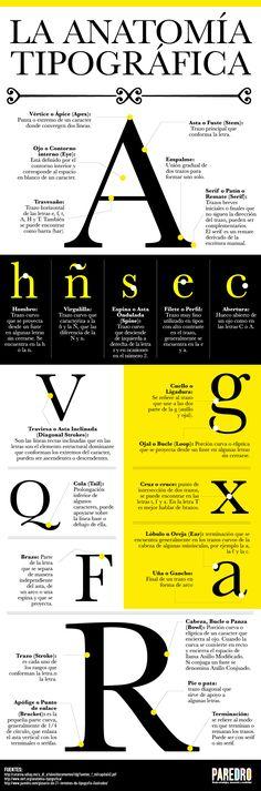 #Infografía La anatomía tipográfica #TIPOGRAFIA