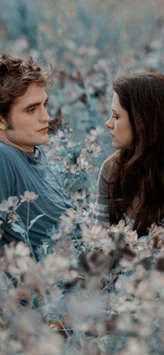 Twilight Scenes, Twilight Saga Series, Twilight Book, Twilight Pictures, Twilight Poster, Robert Pattinson Twilight, Edward Bella, Midnight Sun, New Moon