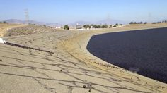 Ninety-six million little balls in the Los Angeles Reservoir will help block sunlight and UV rays that promote algae growth, helping to keep drinking water safe.