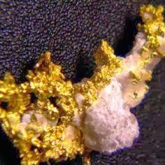 GoldProspecter