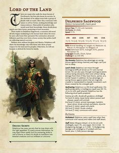 DnD Homebrew — Druid Leader Delphirus Sagewood by Phylea Dungeons And Dragons 5, Dungeons And Dragons Characters, Dungeons And Dragons Homebrew, Dnd Characters, Fantasy Characters, Skyrim, Dnd Druid, Dnd 5e Homebrew, Dragon Rpg