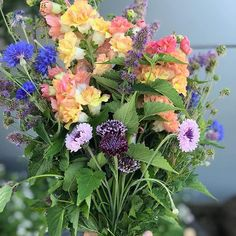 Edible Flower Harvest At Our Rooftop Kitchen Garden This Week S Harvest Includes Chantilly Snapdragons Bachelo Edible Flowers Slow Flower Flower Arrangements