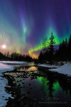 Aurora moonset ... by Cj Kale