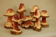 Leland_Mushrooms