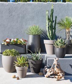 Surfez sur la tendance des bars à plantes ! Aménagez un mini-coin de verdure chez vous, en extérieur ou en intérieur, facile à entretenir et à déplacer si besoin.