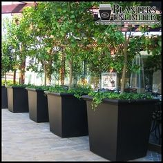 Large outdoor planter ideas large patio pots and planters outdoor tapered square fiberglass planting tips on planter ideas cool large garden planting ideas Large Indoor Planters, Large Planter Boxes, Square Planters, Outdoor Planters, Planter Ideas, Commercial Planters, Commercial Landscaping, Planting Vines, Contemporary Planters
