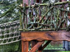 Exterior detailing (Pinewood Hideaway luxury treehouse tree house wooden built in UK housed in Ireland)_tonemapped