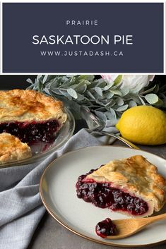 Saskatoon berries (or Juneberries if you're in the USA) are a delicious little berry well known in our prairie provinces that make the most delicious desserts, tarts and jams! This Saskatoon Pie is absolutely delicious topped with vanilla ice cream! Saskatoon Recipes, Saskatoon Berry Recipe, Pie Recipes, Dessert Recipes, Cooking Recipes, Nutella Recipes, Recipies, Just Desserts, Delicious Desserts