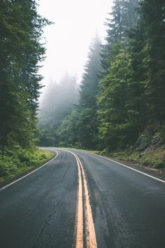 Everything you desire — hannahkemp: Road trip//Washington July 2016 Beautiful Roads, Beautiful Landscapes, Beautiful Places, Landscape Photography, Nature Photography, Travel Photography, Digital Photography, Photography Tips, Adventure Is Out There