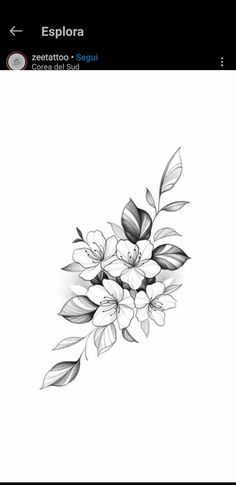 Family Tattoo Designs, Tattoo Designs And Meanings, Tattoo Sketches, Tattoo Drawings, Body Art Tattoos, Small Tattoos, Flower Cover Up Tattoos, Vintage Rose Tattoos, Side Thigh Tattoos