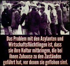 Asyl-Probleme