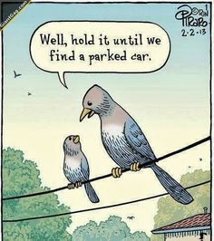 Wait Until You Find A Parked Car | Click the link to view full image and description : )
