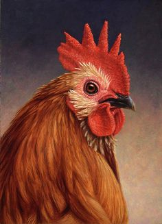 Portrait Of A Rooster Painting  - Portrait Of A Rooster Fine Art Print