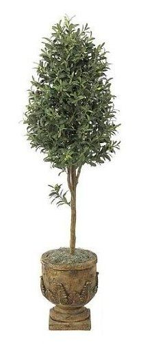Autograph Foliages W-2921 - 6 Foot Olive Tree - Green -- Be sure to check out this awesome product.