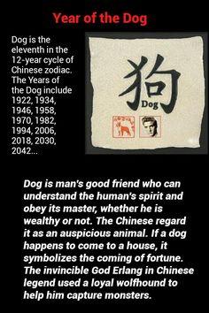 Chinese Zodiac - Year of the Dog