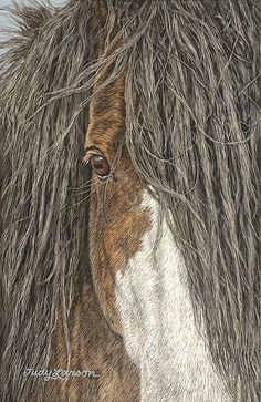 White Wolf: Judy Larson - Talented American Wildlife Artist
