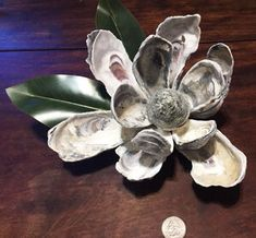 The Charleston Oyster Magnolia — Buy Way of Charleston Seashell Projects, Seashell Crafts, Beach Crafts, Crafts To Do, Diy Projects, Diy Crafts, Oyster Shell Crafts, Oyster Shells, Sea Shells