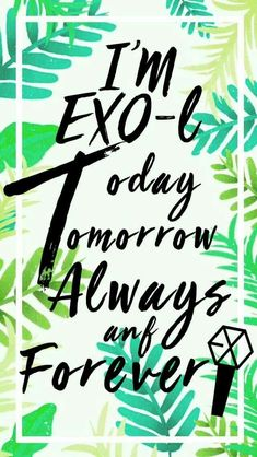 Im an exo-l and i proud of it Chanyeol Baekhyun, Park Chanyeol, Bts And Exo, Exo K, K Pop, Exo For Life, L Wallpaper, Kdrama, Exo Album