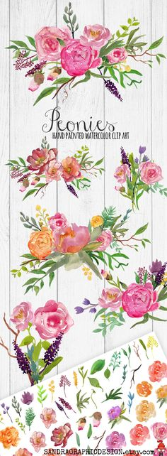 Floral clip art, peony clip art, peony flowers, hand painted peonies, watercolor clip art  This is a large and complete set to create beautiful digital flower bouquets for any creative projects, like making wedding invitations, cards, scrapbook projects, etc.   INSTANT DOWNLOAD on Etsy, by SandraGraphicDesign