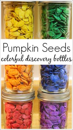 Colorful pumpkin seed discovery bottles for the fall - kids will love exploring the shapes, colors, and sounds of the seed discovery bottles!