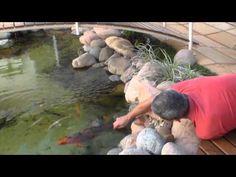 Como fazer um Laguinho p/ Jardim de Inverno passo a passo - YouTube