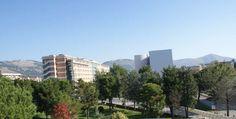 Ospedale di Caserta. Verdi. Operazione conferma anche le nostre denunce a cura di Redazione - http://www.vivicasagiove.it/notizie/ospedale-caserta-verdi-operazione-conferma-anche-le-nostre-denunce/