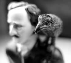 Edgar Allan Poe's THE RAVEN from Trilobite Pictures on Vimeo. Above- Writer/director Peter Bradley brings Edgar Allan Poe's classic horror poem,THE RAVEN, to chilling life in a faithful, word-for-...