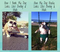 #Bulldog truth