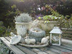 Gartentischdeko.. - Wohnen und Garten Foto