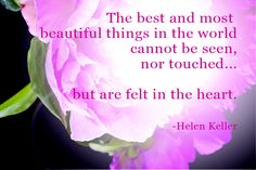 """""""The best and most beautiful things in the world cannot be seen, nor touched...but are felt in the heart.""""  -Helen Keller"""