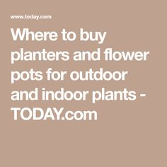 Where to buy planters and flower pots for outdoor and indoor plants - TODAY.com Buy Plants, Indoor Plants, Indoor Outdoor, Flower Planters, Flower Pots, Flowers, Container Plants, House Plants, The Good Place