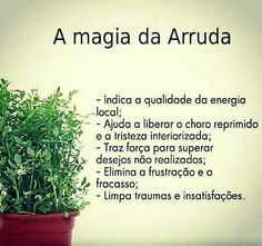 Magic Day, A Kind Of Magic, Herbal Magic, Going Natural, Solution, Medicinal Plants, Herbal Medicine, Wicca, Better Life