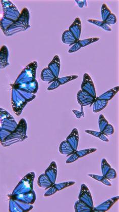 Blue butterfly 🦋💞✨