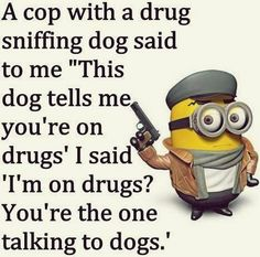 Everyone loves minions more than any other personality. So you love Minions and also looking for Minions jokes then we have posted a lovely minion jokes. Here are 28 Minions Memes pen Funny Minion Pictures, Funny Minion Memes, Minions Quotes, Funny Jokes, Minion Sayings, Minion Humor, Minions Images, Funniest Jokes, Memes Humor