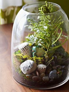 Natural Decor -- Natural Decor  A terrarium on top of the desk makes a nod to the bedroom's nature-inspired motif. Make your own using a large store-bought glass vase and filling it with dirt, small rocks, and leafy greens. Here, the homeowner wrote her son's name on one of the rocks to add a more personal touch