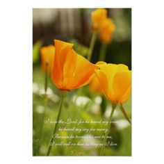 =>>Save on          I love the Lord,, orange poppies wall poster           I love the Lord,, orange poppies wall poster you will get best price offer lowest prices or diccount couponeReview          I love the Lord,, orange poppies wall poster Here a great deal...Cleck Hot Deals >>> http://www.zazzle.com/i_love_the_lord_orange_poppies_wall_poster-228791119941412561?rf=238627982471231924&zbar=1&tc=terrest