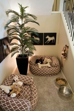 aww it is so cute to have a seperate room just for your animals.