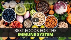 Top Foods to Support the Immune System Adrenal Fatigue, Health Articles, Immune System, Natural Health, Acai Bowl, Health And Wellness, Foods, Vegetables, Eat