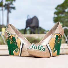 Proud to be a USF bull... And I will be VERY glad when I finally graduate :))