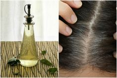 Cover up your grey hairs naturally with a Sage Vinegar Rinse. The Sage Rinse for Grey hair will make your hair healthier and shiny without harsh chemicals.