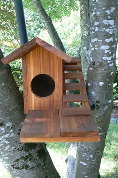 Squirrel House - I wonder if something like this would keep the squirrels out of the bird houses...
