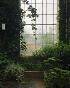 Natur im Innenraum // Fotografie von Haarkon / India & Magnus (
